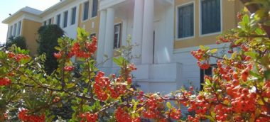 Greek Lessons in spetses